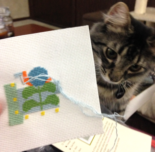 My kitten and I working on my latest project.